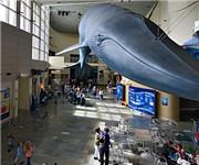 Photo of Aquarium of the Pacific - Long Beach, CA - Long Beach, CA