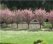 Photo of Fox Hollow Equestrian Center - Issaquah, WA