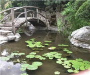 Photo of Zilker Botanical Garden - Austin, TX