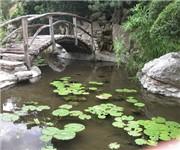 Zilker Botanical Garden - Austin, TX (512) 477-8672