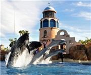 Photo of SeaWorld - San Diego, CA
