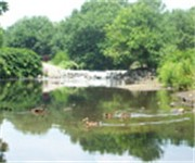 Photo of Saddle River County Park - Dunkerhook Area - Paramus, NJ