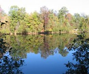 Reedy Creek Park - Charlotte, NC (704) 598-8857