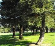 Christmas Hill Park Gilroy Ca 95020.Christmas Hill Park In Gilroy Ca 408 842 1625 Kids