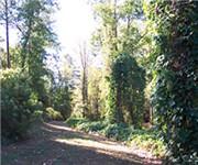 Photo of Newtown Park - Alpharetta, GA