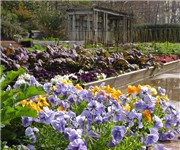 Photo of Botanical Gardens - Birmingham, AL - Birmingham, AL
