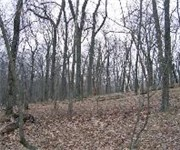 Photo of Campgaw Mountain Reservation - Mahwah, NJ