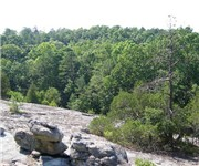 Photo of Panola Mountain State Park - Stockbridge, GA - Stockbridge, GA