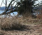 Photo of Indian Island County Park - Riverhead, NY