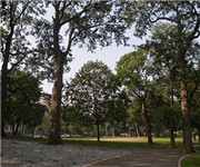 Photo of Brower Park - Brooklyn, NY