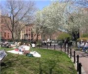 Photo of Cobble Hill Park - Brooklyn, NY