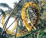 Photo of Busch Gardens - Tampa, FL