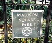 Photo of Madison Square Park - New York, NY - New York, NY