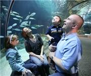 Photo of Omaha's Henry Doorly Zoo - Omaha, NE