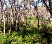 Photo of Palatlakaha Park - Clermont, FL