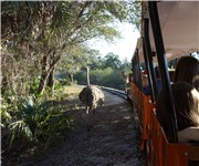 Photo of Brevard Zoo - Melbourne, FL