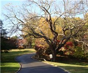 Photo of Meadowbrook Park - Chevy Chase, MD
