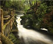 Photo of Bushkill Falls - Bushkill, PA