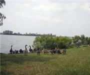 Photo of Horseshoe Lake State Park - Granite City, IL