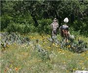 Photo of Orsinger Park - San Antonio, TX