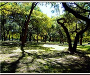 Photo of Olmos Park - San Antonio, TX