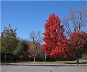 Photo of Brundage Park Recreation Complex - Randolph, NJ