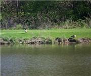 Photo of Mill Pond Park - Saline, MI