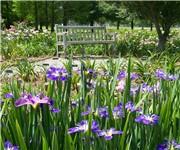 Photo of Independence Park - Baton Rouge, LA