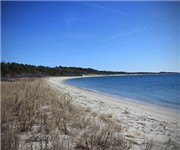 Photo of Kiptopeke State Park - Cape Charles, VA - Cape Charles, VA