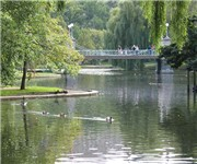 Photo of Boston Common - Boston, MA