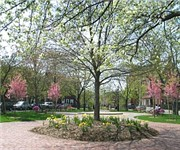 Photo of Linden Park - Boston, MA
