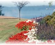 Photo of Legion Memorial Park - Everett, WA