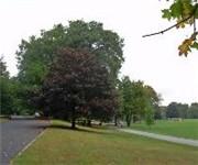 Photo of BROOKDALE PARK - Bloomfield, NJ