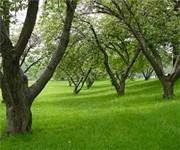 Photo of Harbor Island Park - Mamaroneck, NY
